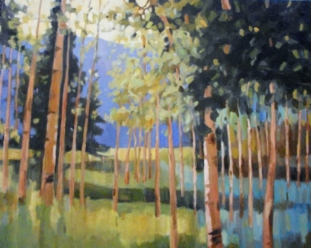 100-1429 Aspens oil on canvas 24 x 30